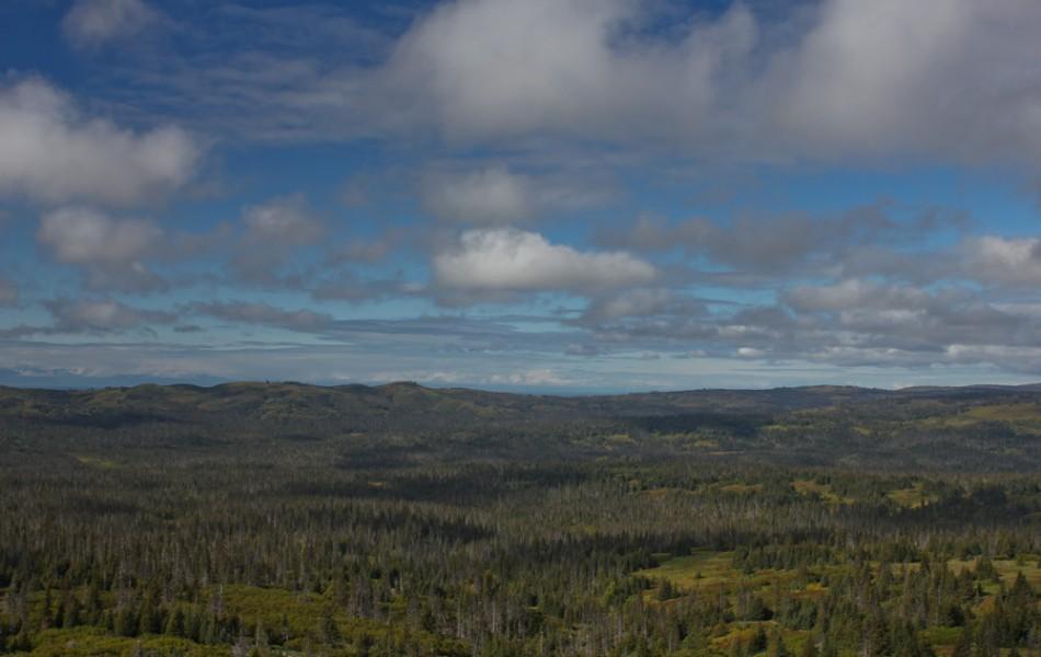 Olsen Mountain