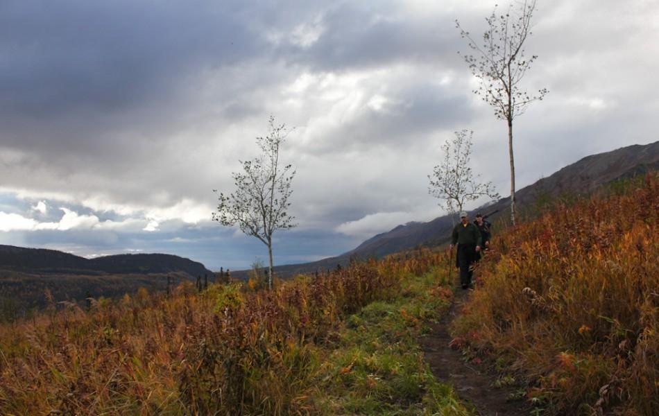 Eska Falls Trail